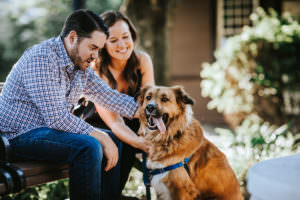 engagement photos with pets