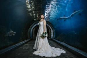 Camden adventure aquarium photos